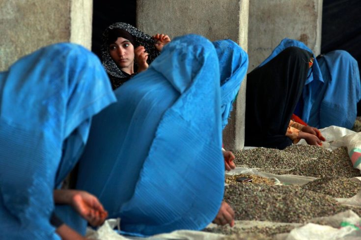 In a 2011 survey by  Oxfam  , 87% of Afghan women state that they have been subjected to physical violence, rape and / or  forced marriage .