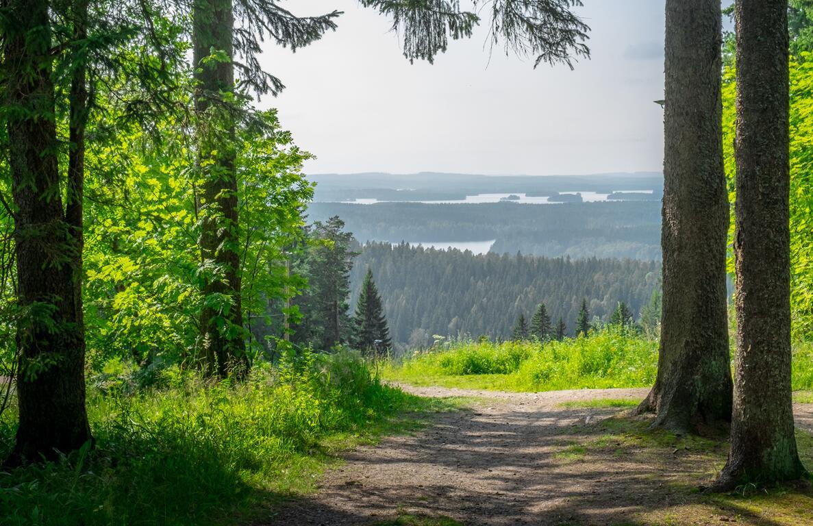 View of Finnish nature