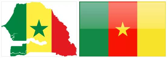 Cameroon Flag and Map 2